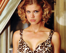 This is an image of 283747 Adrianne Palicki Photograph & Poster