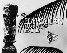 This is an image of 193756 Hawaiian Eye Photograph & Poster