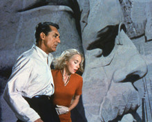 This is an image of 280544 North by Northwest Photograph & Poster