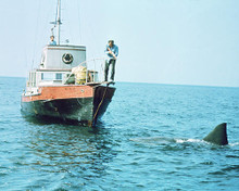 This is an image of 269124 Jaws Photograph & Poster