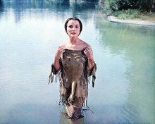 This is an image of 233030 Debra Paget Photograph & Poster