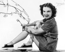 This is an image of 179588 Judy Garland Photograph & Poster
