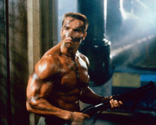 This is an image of 264128 Arnold Schwarzenegger Photograph & Poster