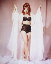 This is an image of 232745 Joey Heatherton Photograph & Poster