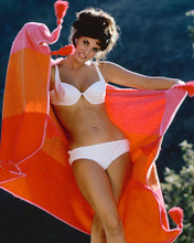 This is an image of 243512 Raquel Welch Photograph & Poster