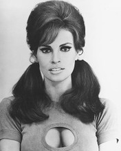 This is an image of 172056 Raquel Welch Photograph & Poster
