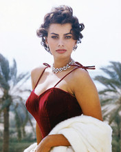 This is an image of 256206 Sophia Loren Photograph & Poster