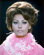 This is an image of 257653 Sophia Loren Photograph & Poster