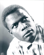This is an image of 190130 Sidney Poitier Photograph & Poster