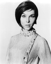 This is an image of Photograph & Poster of Yvonne Craig 194649