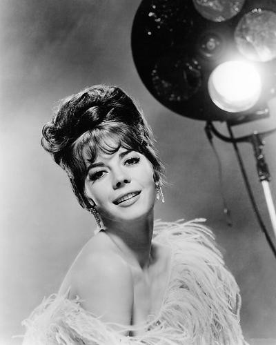 This is an image of Photograph & Poster of Natalie Wood 194690