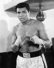 This is an image of Photograph & Poster of Muhammad Ali 194703