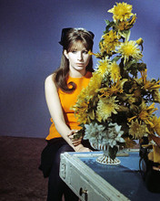 This is an image of Photograph & Poster of Barbra Streisand 284402