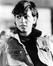 This is an image of Photograph & Poster of Ralph Macchio 195070