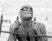 This is an image of Photograph & Poster of The Amazing Spider-Man 194825