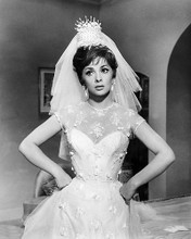 This is an image of Photograph & Poster of Gina Lollobrigida 195116