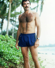 This is an image of Photograph & Poster of Tom Selleck 284859