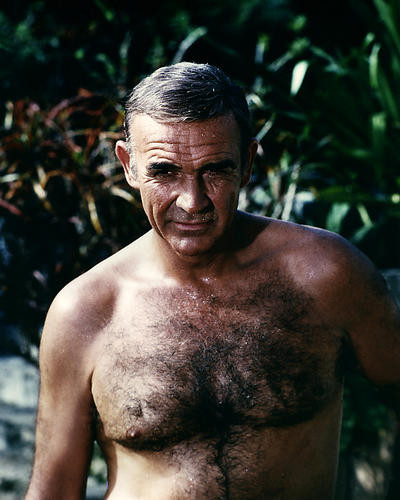 This is an image of Photograph & Poster of Sean Connery 285072