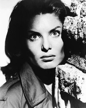 This is an image of Photograph & Poster of Belinda Lee 195433