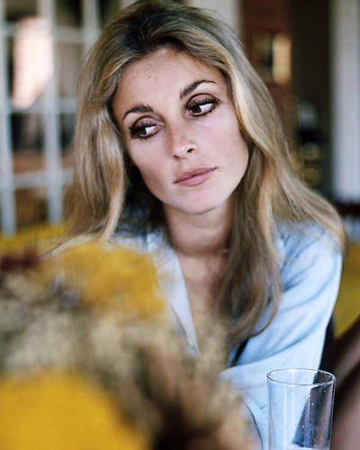 This is an image of Photograph & Poster of Sharon Tate 285149