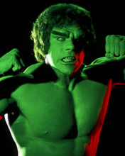 This is an image of Photograph & Poster of The Incredible Hulk 285348
