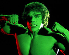 This is an image of Photograph & Poster of The Incredible Hulk 285379