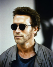 This is an image of Photograph & Poster of Arnold Schwarzenegger 285623
