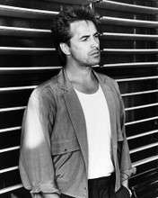 This is an image of Photograph & Poster of Don Johnson 195740
