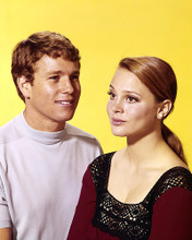 This is an image of Photograph & Poster of Peyton Place 290563