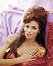This is an image of Photograph & Poster of Raquel Welch 290820