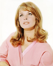 This is an image of Photograph & Poster of Senta Berger 290821