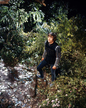 This is an image of Photograph & Poster of Leonard Whiting 290824