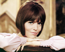 This is an image of Photograph & Poster of Barbara Feldon 290870