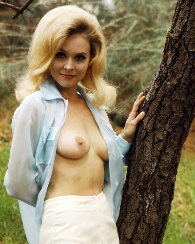 This is an image of Photograph & Poster of Diane McBain 290998