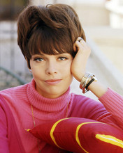 This is an image of Photograph & Poster of Barbara Feldon 291030