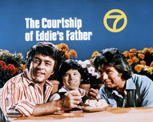 This is an image of Photograph & Poster of The Courtship of Eddie's Father 291065