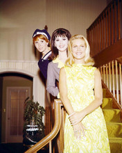 This is an image of Photograph & Poster of Bewitched 291995