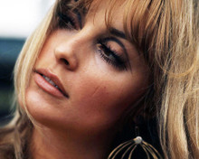 This is an image of Photograph & Poster of Sharon Tate 291131