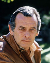 This is an image of Photograph & Poster of David Janssen 291164