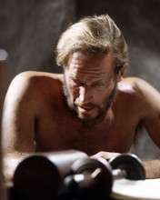 This is an image of Photograph & Poster of Charlton Heston 291179