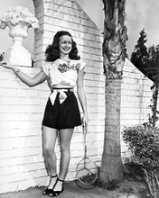 This is an image of Photograph & Poster of Noel Neill 199526