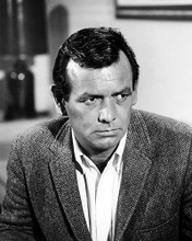 This is an image of Photograph & Poster of David Janssen 199545