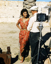 This is an image of Photograph & Poster of Sophia Loren 291353