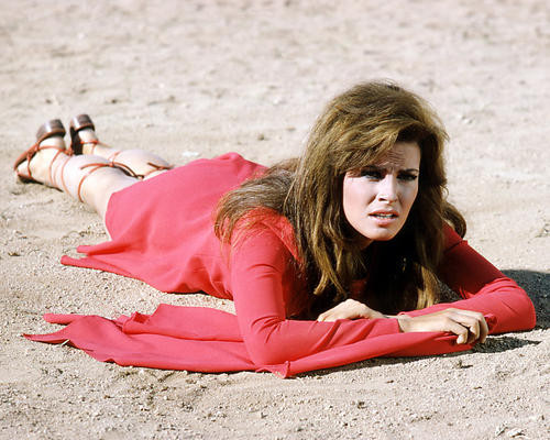 This is an image of Photograph & Poster of Raquel Welch 291412
