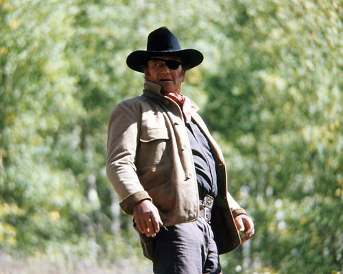 This is an image of Photograph & Poster of John Wayne 291414