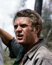 This is an image of Photograph & Poster of Steve McQueen 291593