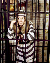 This is an image of Photograph & Poster of Elizabeth Montgomery 291708