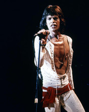 This is an image of Photograph & Poster of Mick Jagger 291672