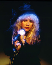 This is an image of Photograph & Poster of Stevie Nicks 291845
