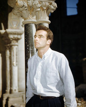 This is an image of Photograph & Poster of Montgomery Clift 292059